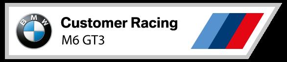 BMW Customer Racing M6 GT3